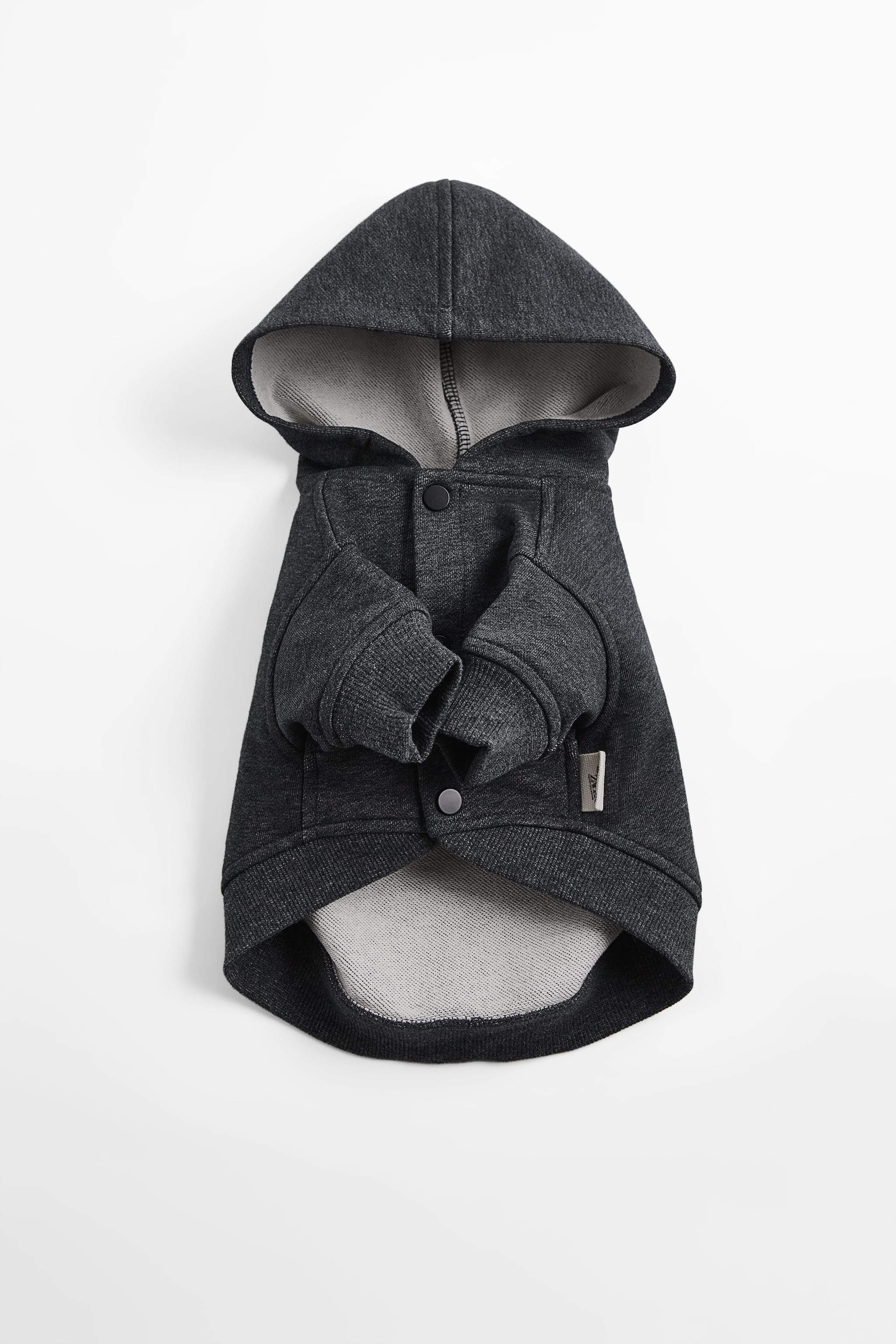 PET COLLECTION HOODIE