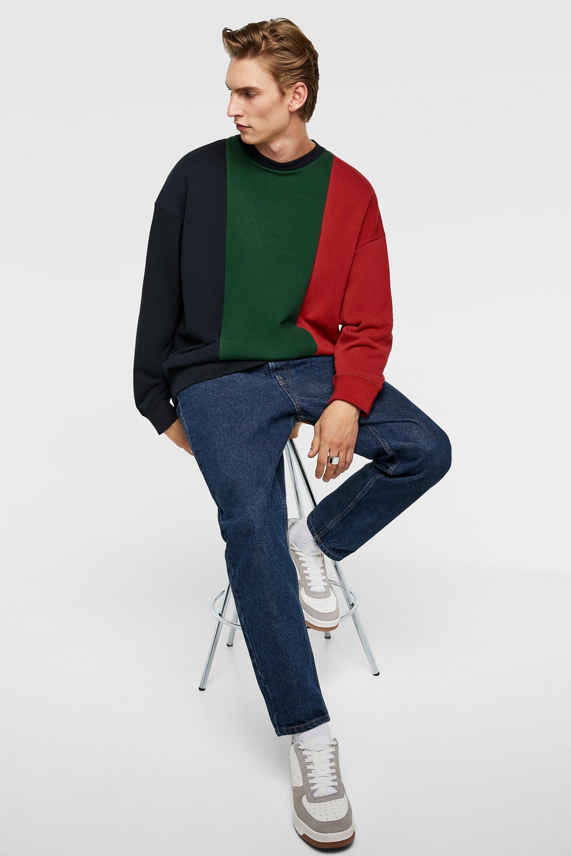 Vertical Panel Sweatshirt  Prints Sweatshirts Man by Zara